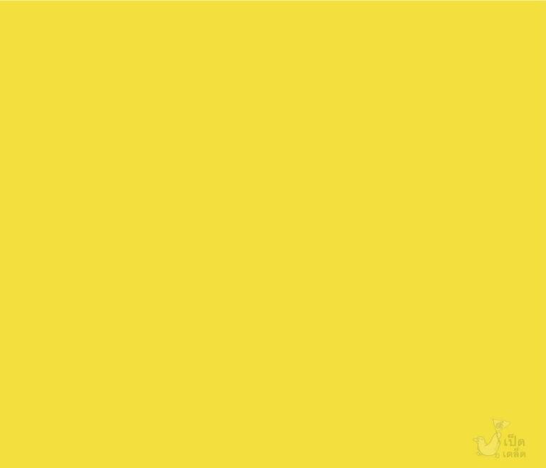 08แล้วพบกันนะ_คุณสีเหลือง_002