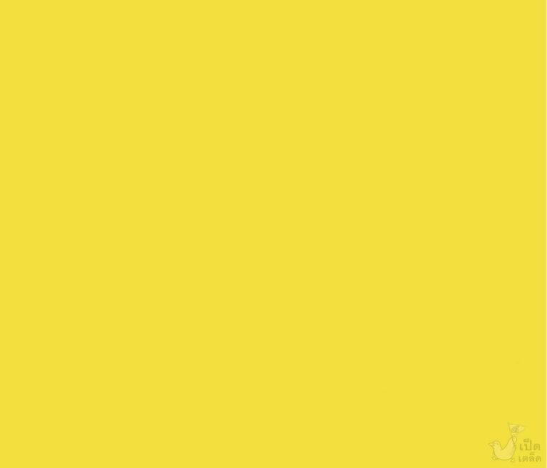 08แล้วพบกันนะ_คุณสีเหลือง_039